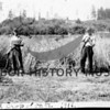 Farming in Cromwell, 1916.  Cutting oats with scythes; Manfred and Oscar Samuelson on the home place (Sunny Hill Farm.)  Source:  Mrs. C.F. McCormick.