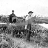 Farming at East Wollochet.  Hageness brothers hauling bales of hay on wheelbarrow;  source:  Hageness