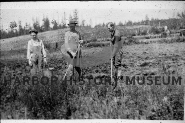 Farmers Digging Potatoes
