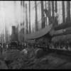 Rainier Logging Co at Minter on Key Peninsula