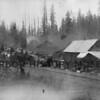 Purdy Logging Camp