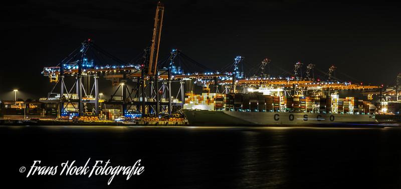 Container terminal Maasvlakte Rotterdam