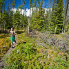 Fit woman trail running in Bowron Lake Provincial Park.