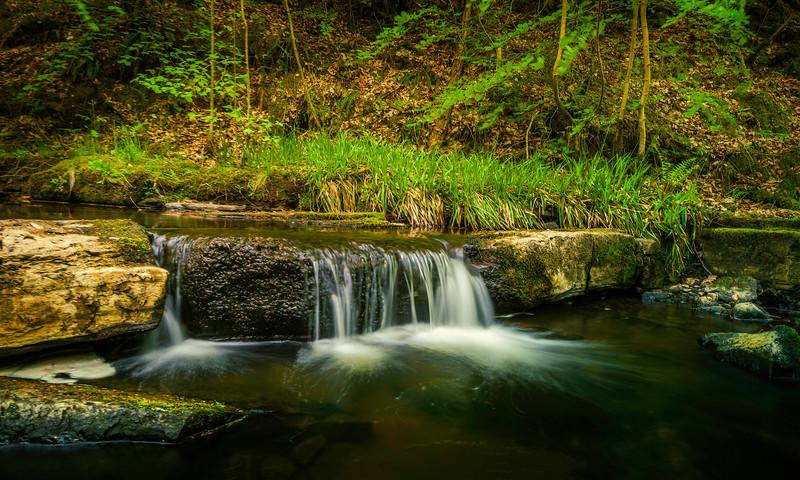 On the path to Hareshaw Linn Waterfall.