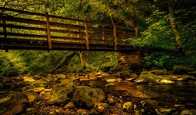 One of the 6 bridges along the path to Hareshaw Linn.