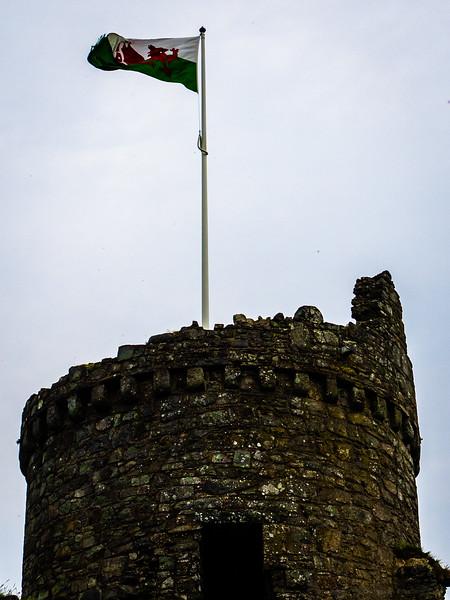 Flying the Tattered Flag