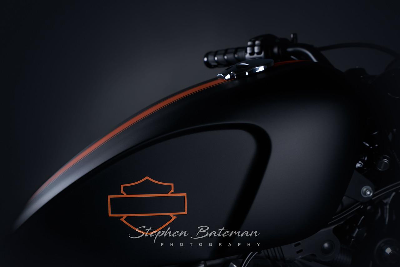 Custom Harley Davison Sportster 48