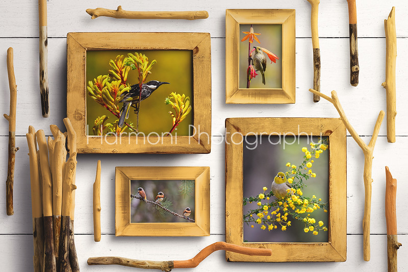 Yellow Wooden Frames - Mockup