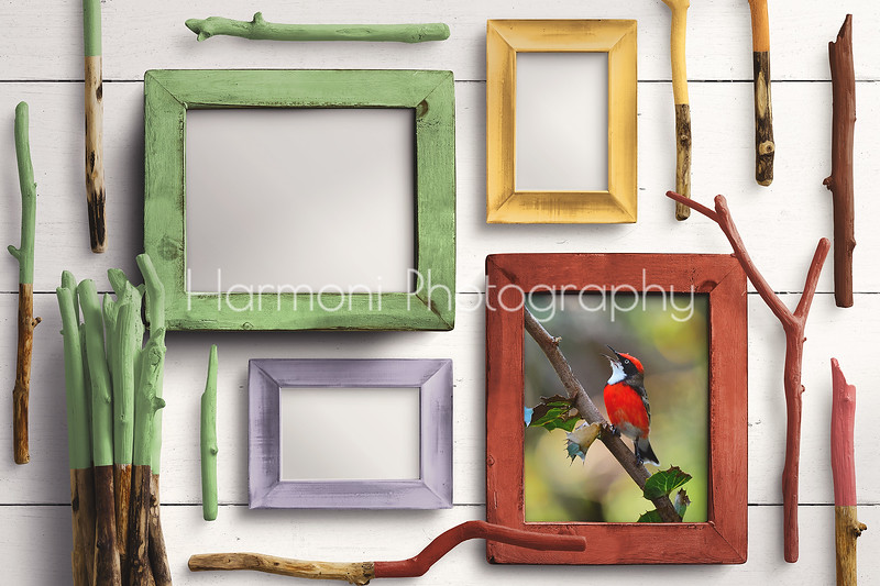 Red Crimson Chat - Wooden Frames Mockup