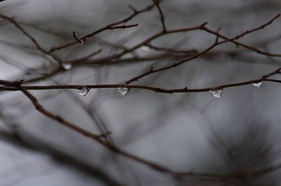 Frozen Ice Droplets