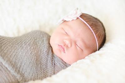 Harper Newborn-03