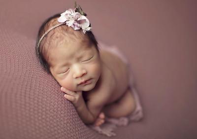 harper jo newborn
