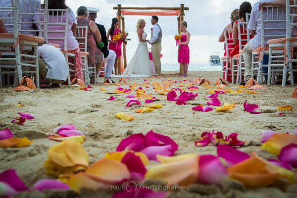 Rose petals on the beach