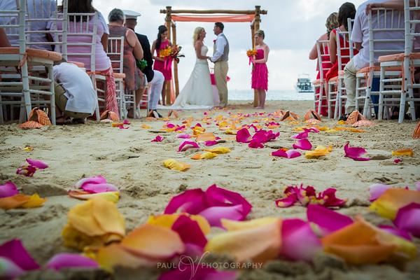 Rose petals on the beach