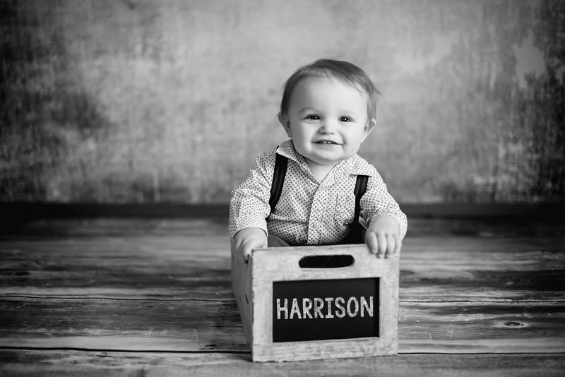 Harrison1Yr-10