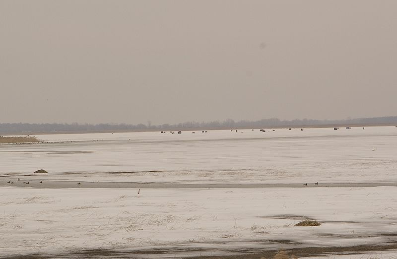 But they are still Ice fishing in the bay