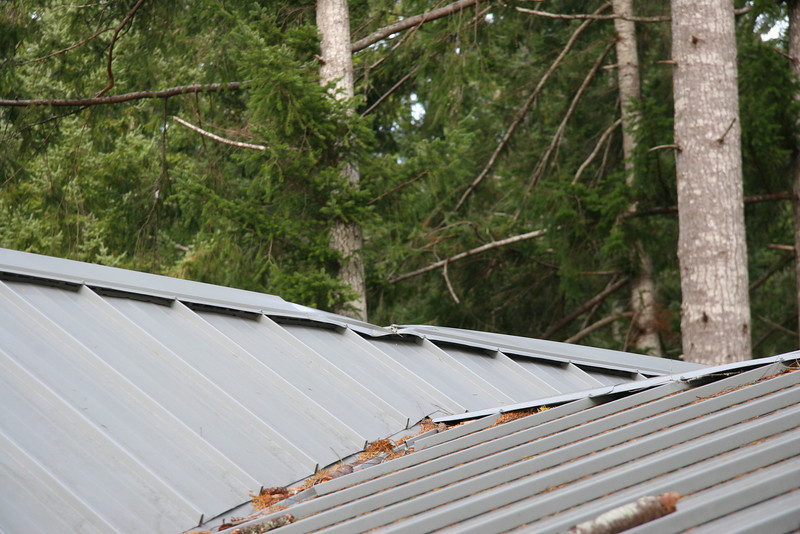 Tree fell from south, across sw part of roof, and across prow ridge-vent that runs east-west.   Shown here facing NE.