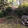 Steep trail to back yard