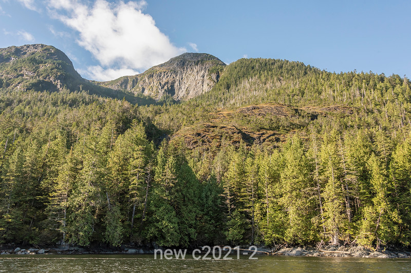 Rugged mountain scenery along Grenville Channel, north coastal British Columbia