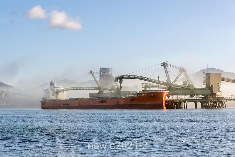 'Lake Dawn' bulk carrier at the Ridley coal terminaL in a light fog, Prince Rupert, British Columbia