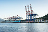 Container terminal with Maersk Kokura and gantry cranes, Prince Rupert, British Columbia
