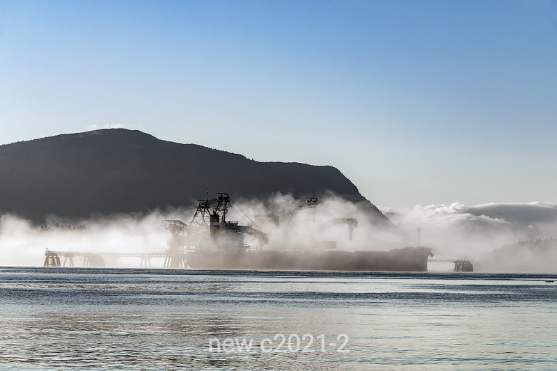 Bulk carrier 'Lake Dawn' in the fog at the Ridley coal terminal, Kaien Island, Prince Rupert, British Colulmbia