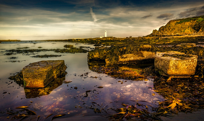 Hartley Bay-024.jpg