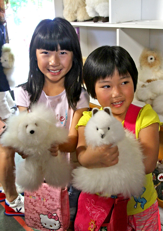 . Here these two young girls have from just the thing in the alpaca store, L-R, Claire Zhao, 7 and Riley Yan, 4 both from Boston. SUN Photo by David H. Brow