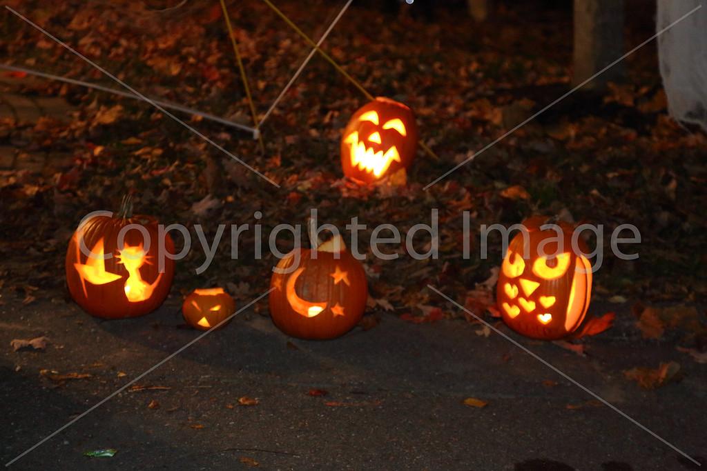 2016_Halloween_8732