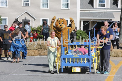 2016_lions_beds_2191