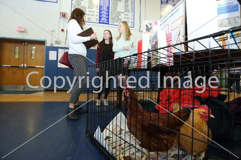 """who doesn't love chickens? From left: Judge Courtney Fitzgerald speaks with Quincy Chipman and Molly Squires about their experiment """"The Effect of Colored LIght on Chickens Laying Eggs."""""""