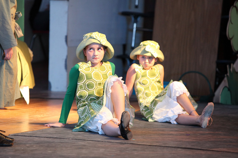 frog_and_toad_3203