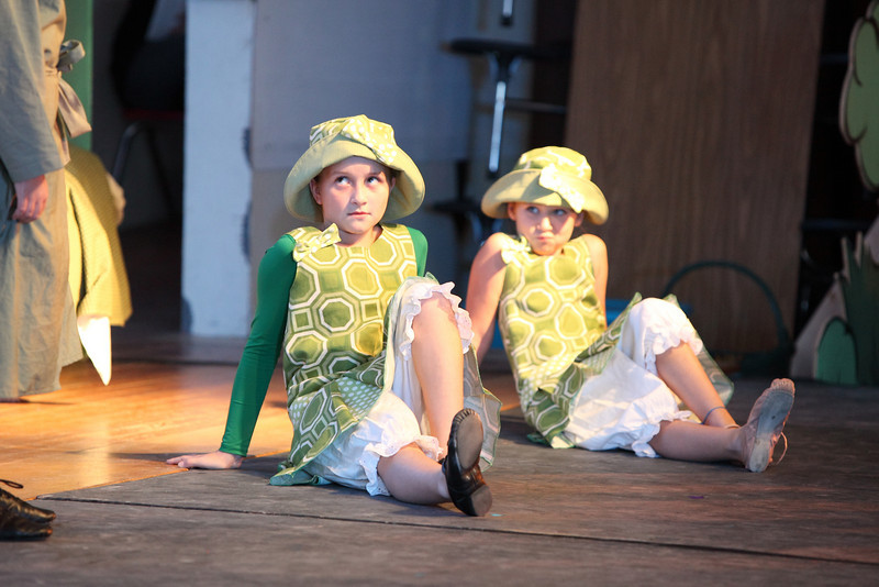 frog_and_toad_3202