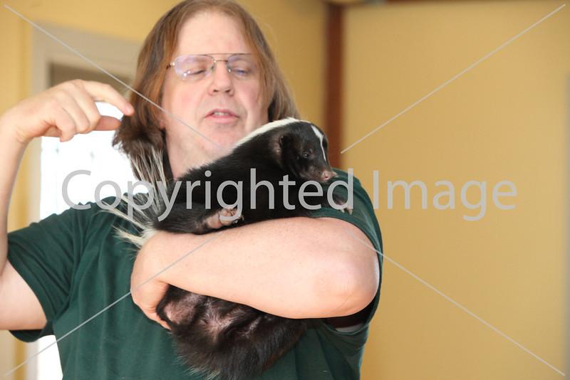 animal adv_6913
