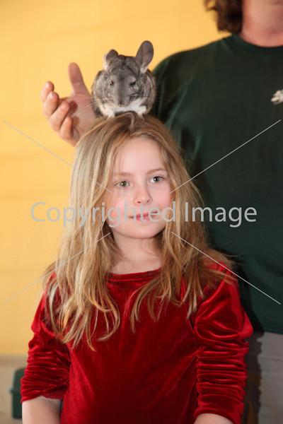 animal adv_6924