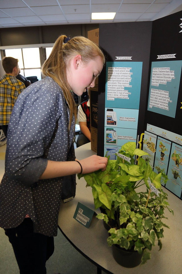 2015_Science_Fair_9476