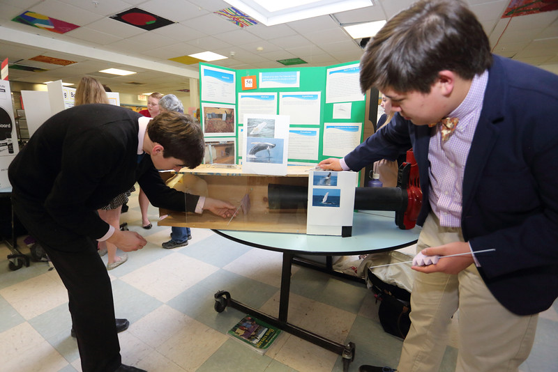2015_Science_Fair_9451
