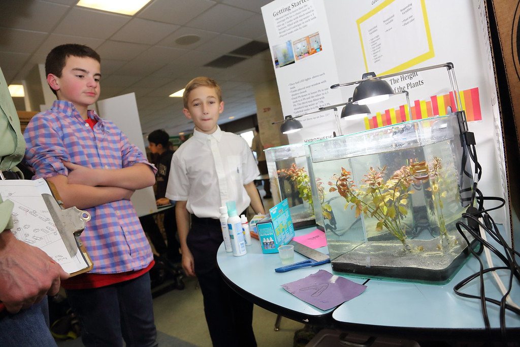 2015_Science_Fair_9474