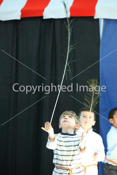 circus_9833