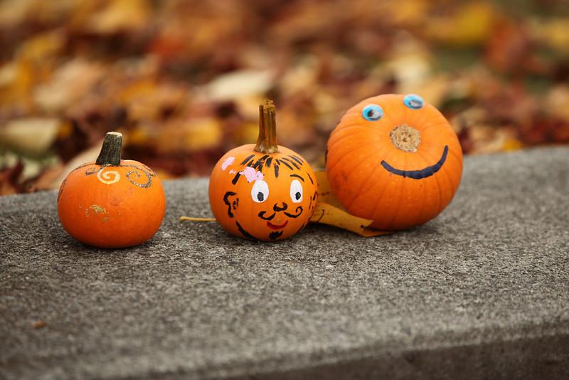 Halloween_09_2425