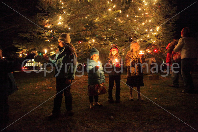 tree_lighting_3464