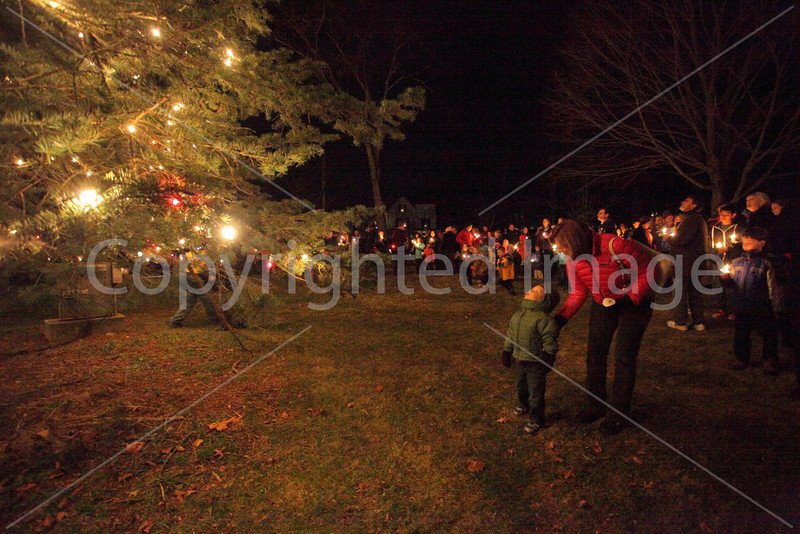 tree_lighting_3455