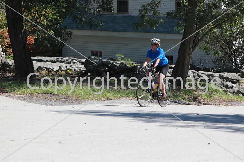 bicycle_9901