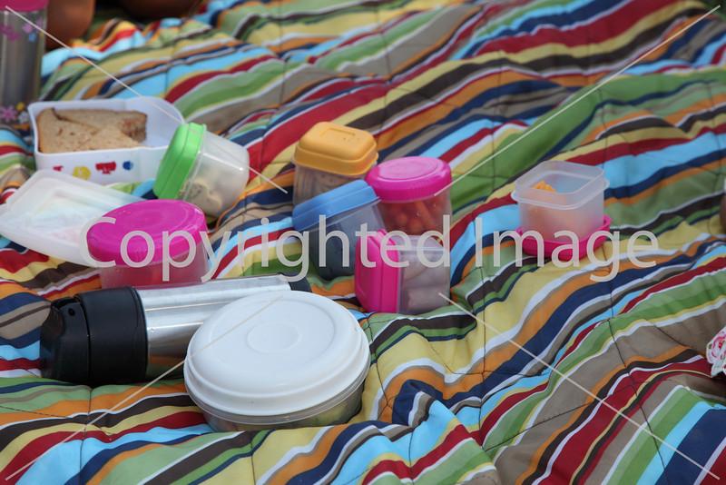 k-picnic_7735