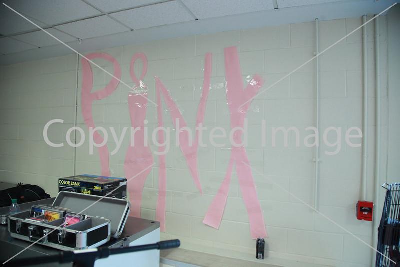 Pink_8213
