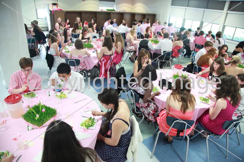 Pink_8206