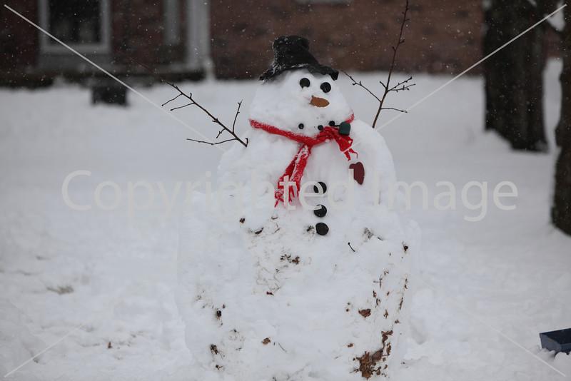 snow_7087