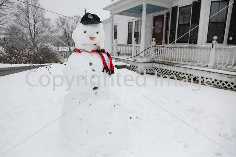 snow_7067