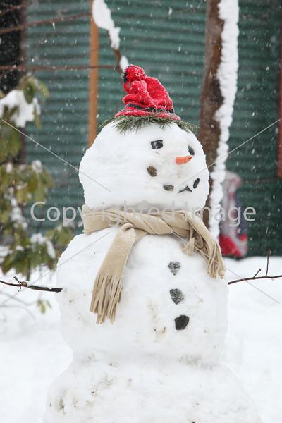 snow_7097
