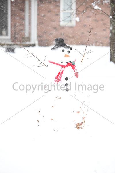 snow_7085